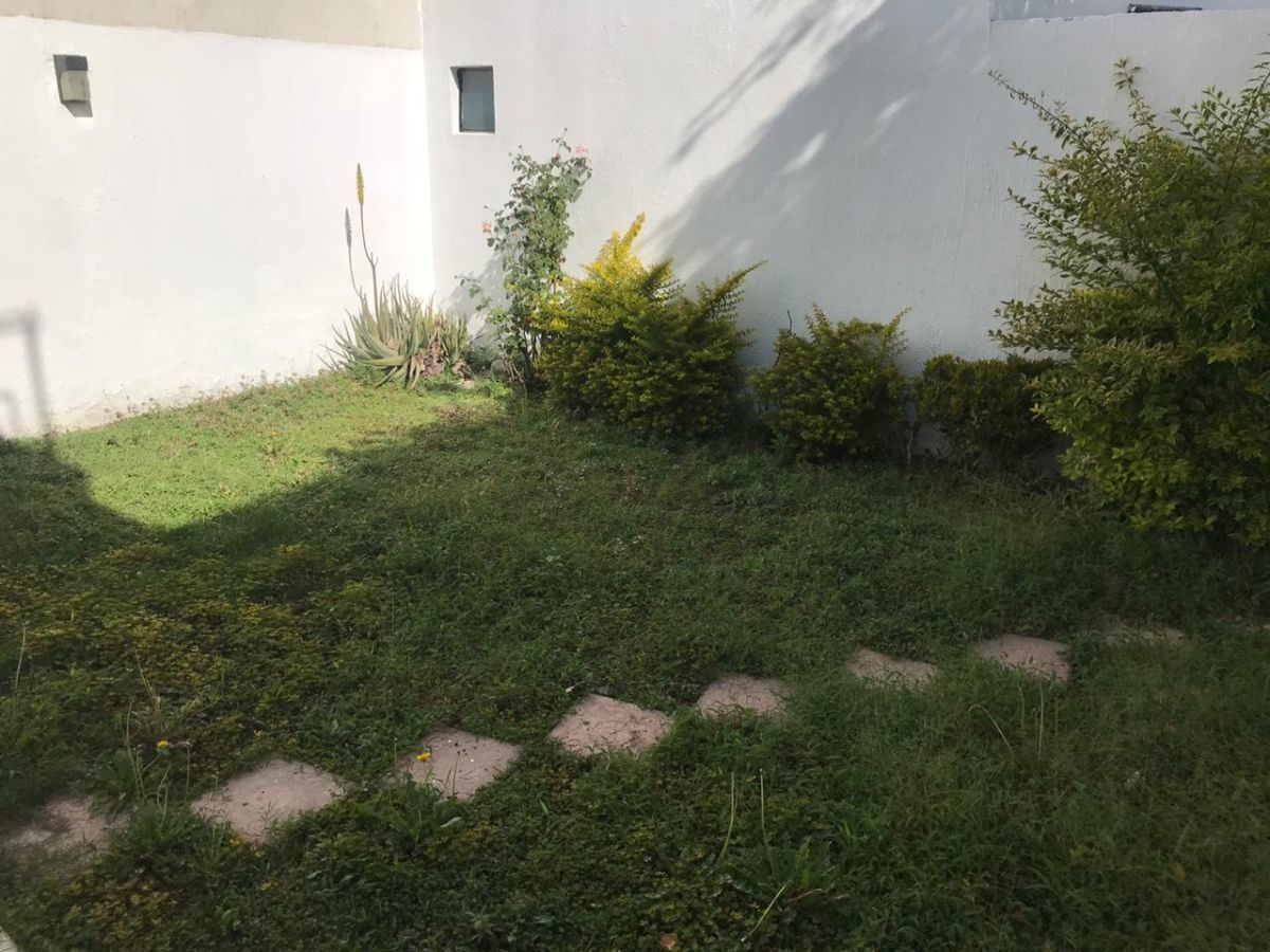4 de 13: jardin