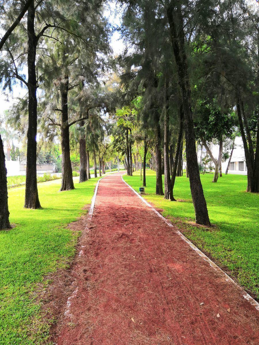 37 de 38: Pista de jogging