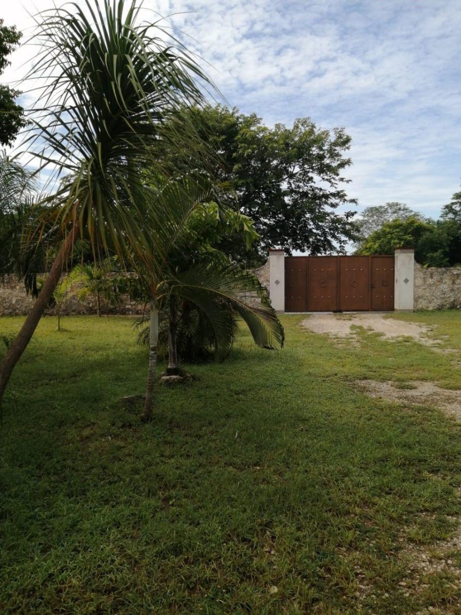 1 de 4: Frente del terreno, con jardines y palmeras.