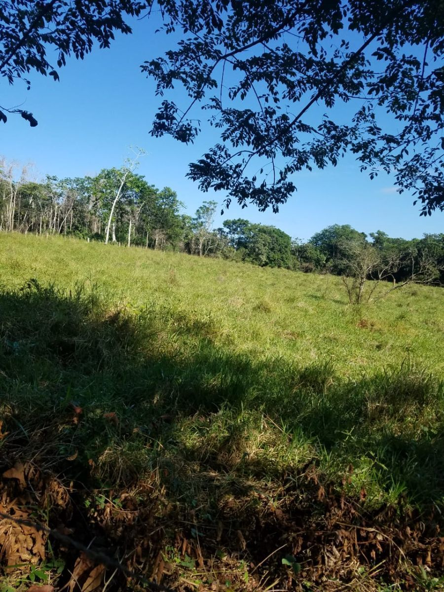 1 de 2: Foto del terreno
