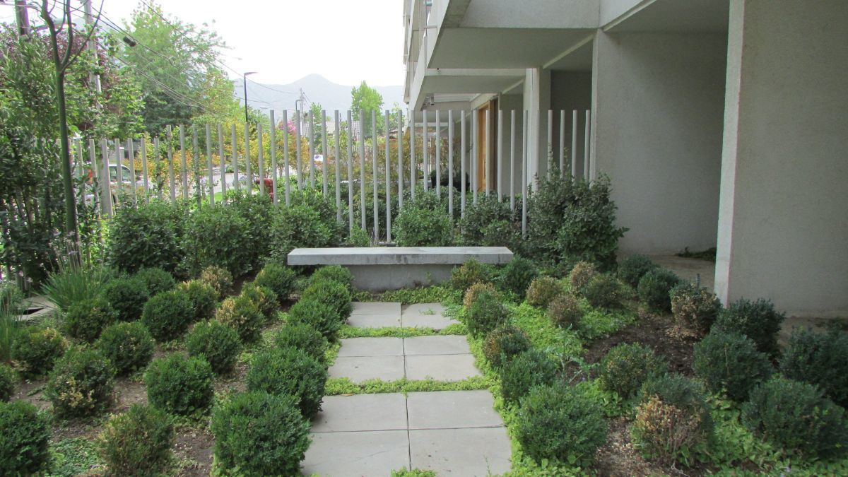 15 de 15: Jardín edificio