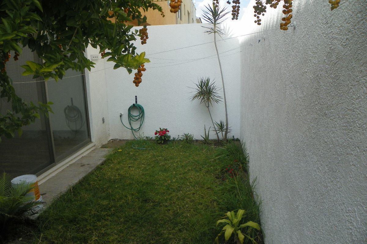7 de 16: jardin trasero