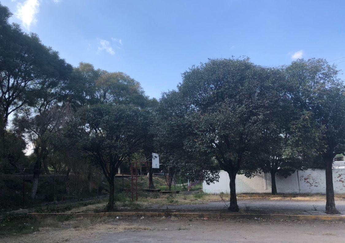 15 de 15: Jardín común