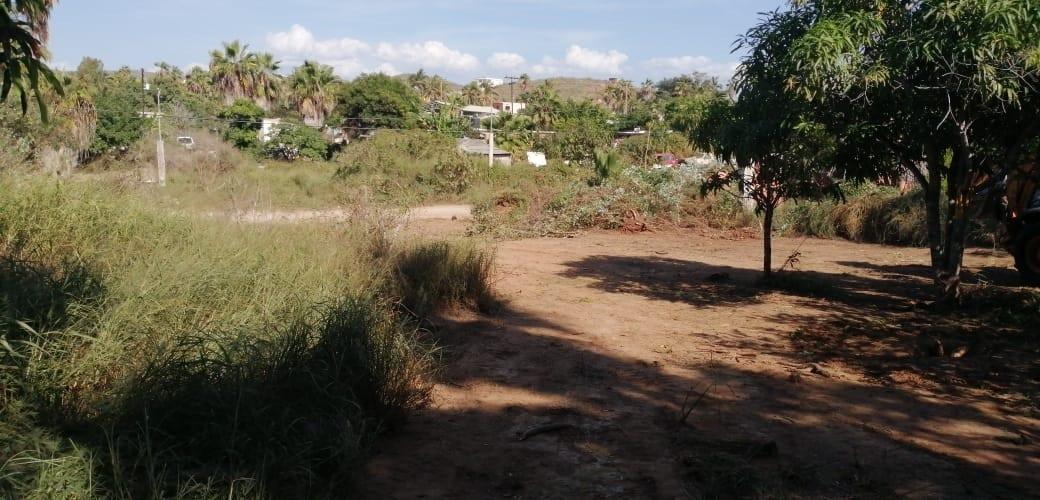 3 de 17: vista de terreno parte central hacia fuera