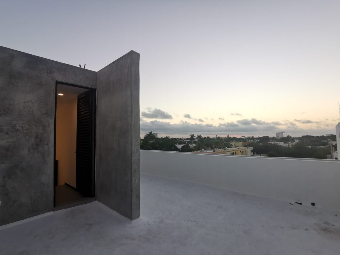 11 de 12: Roof Graden