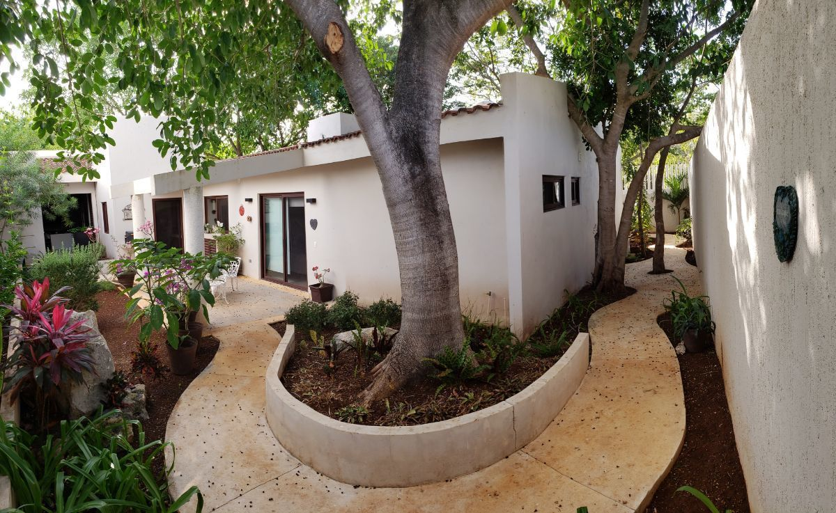 1 de 24: caminos y vegetación rodean la casa