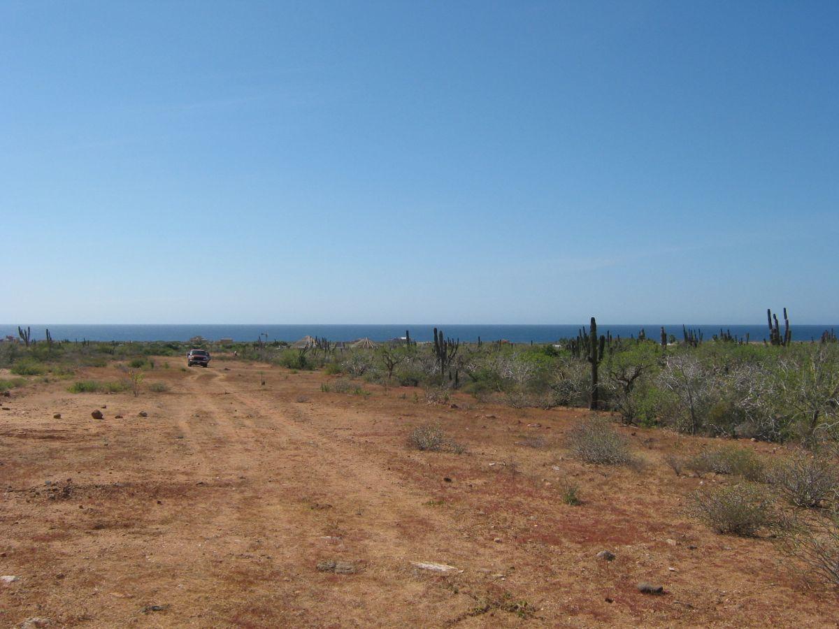 1 de 3: Terreno en Venta cercano a El Palmar de en medio