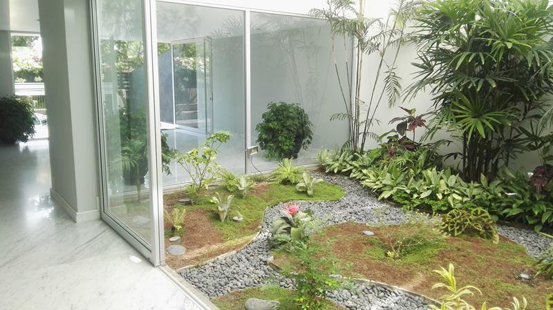 22 de 31: Jardín interior en el Lobby