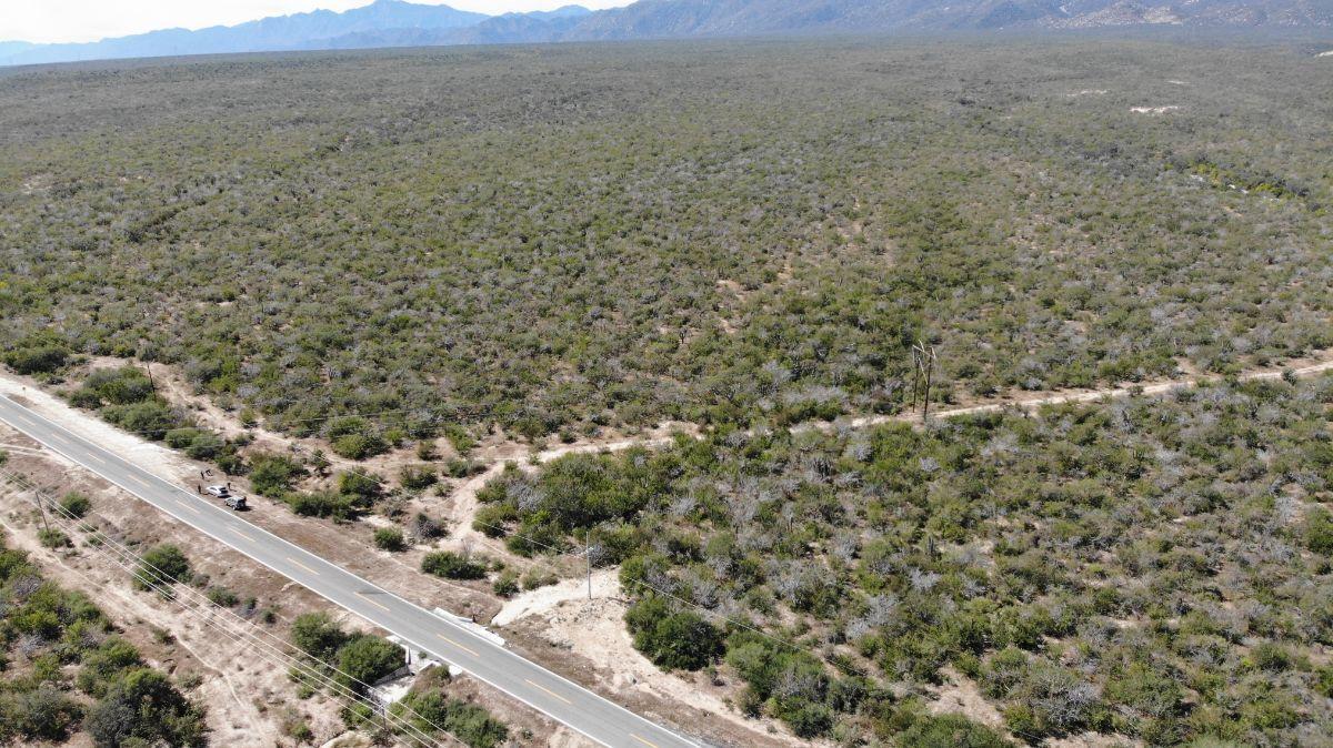 4 de 5: Vista hacia 199 hectáreas rumbo a montañas