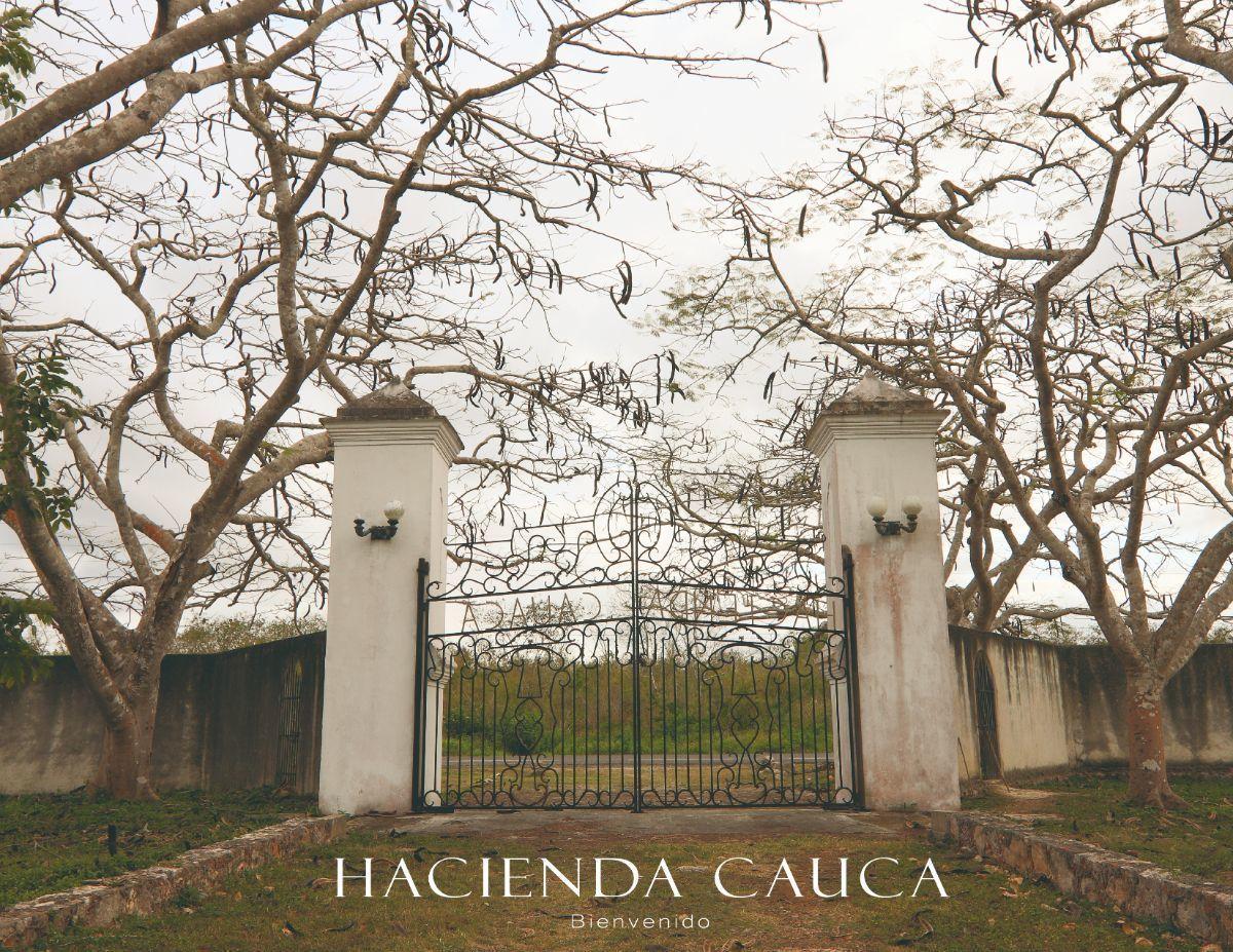 3 de 23: Hacienda en Venta Temax Mérida Yucatán Chichén Realty