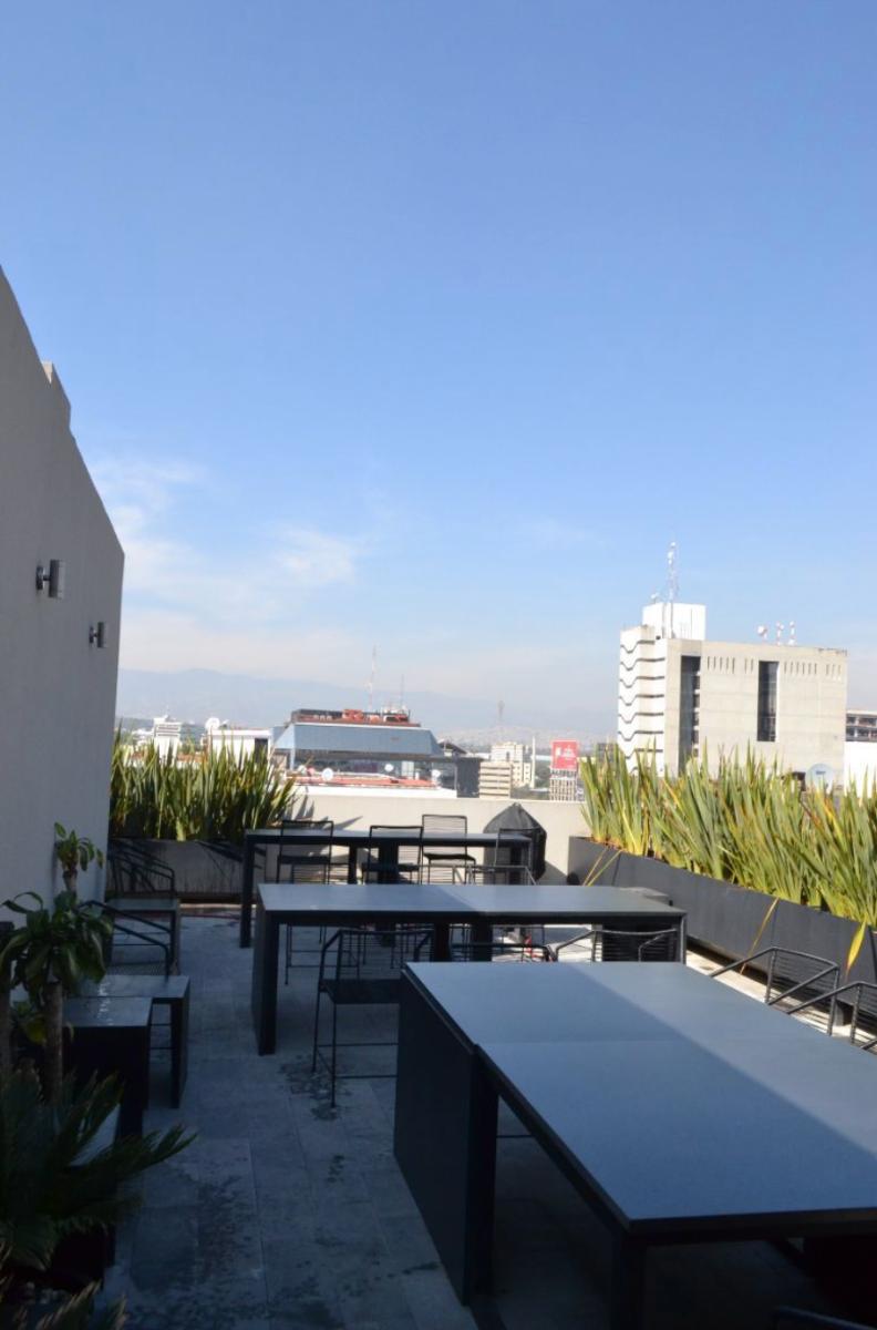 14 de 14: Roofgarden común