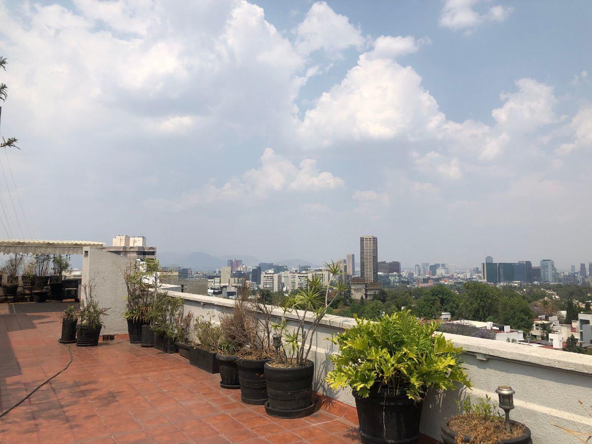 28 de 35: Terraza / Roofgarden