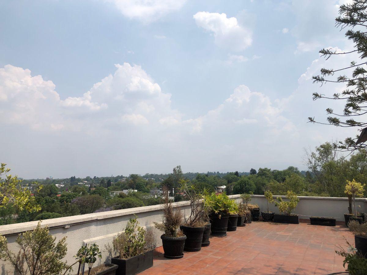 29 de 35: Terraza / Roofgarden