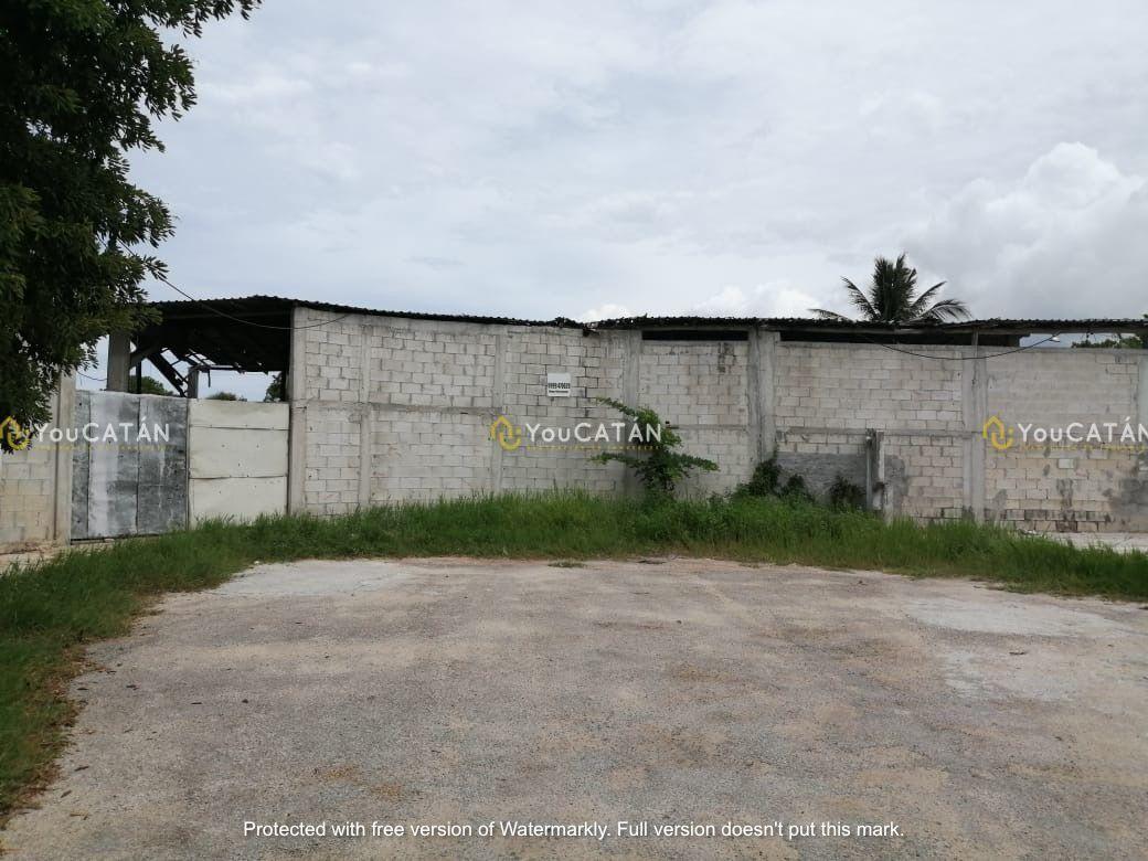 6 de 12: Calle secundaria de acceso a la propiedad