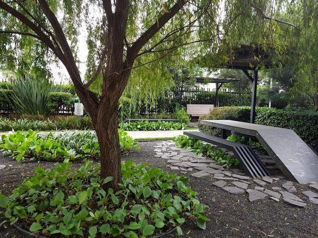 9 de 17: Jardin