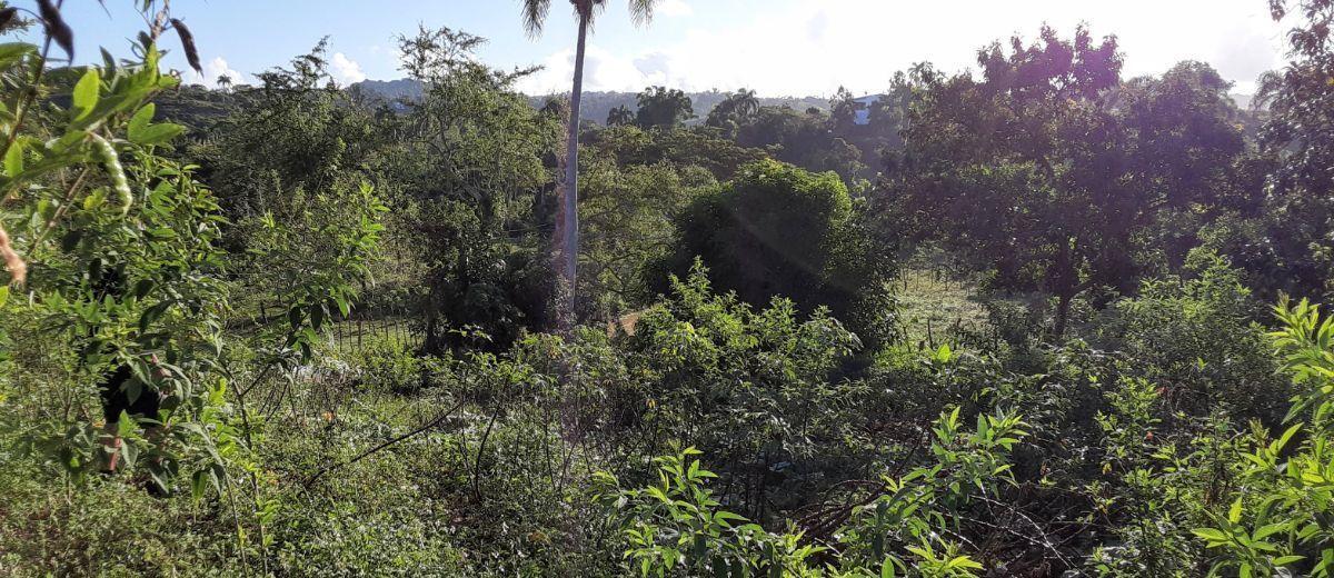1 de 9: Terreno en Rio San Juan. Perfecto para construir tu casa