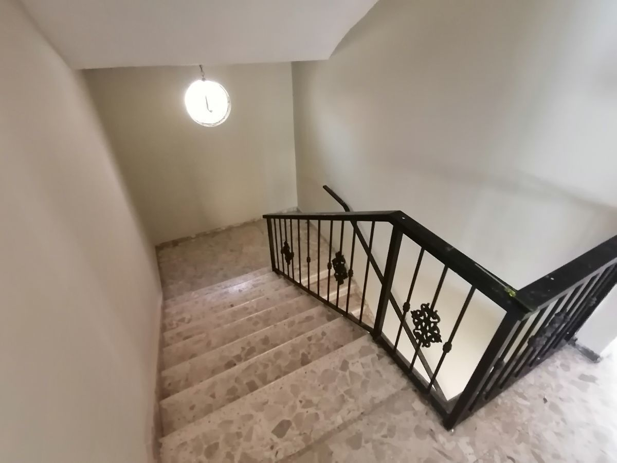 Amplia casa con 4.5 habitaciones y 3 parqueos en SFMimage7