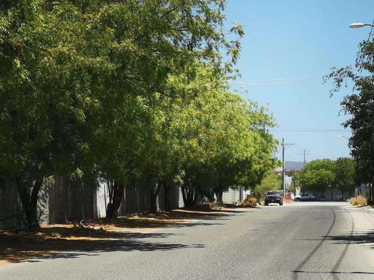 17 de 19: calle  afuera de privada vista hacia calleserdan