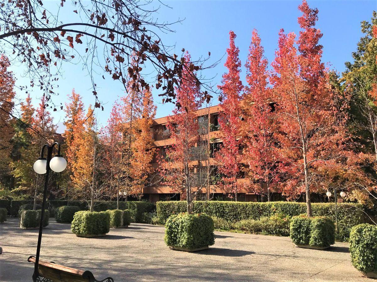 1 de 16: Vista fachada edificio jardines