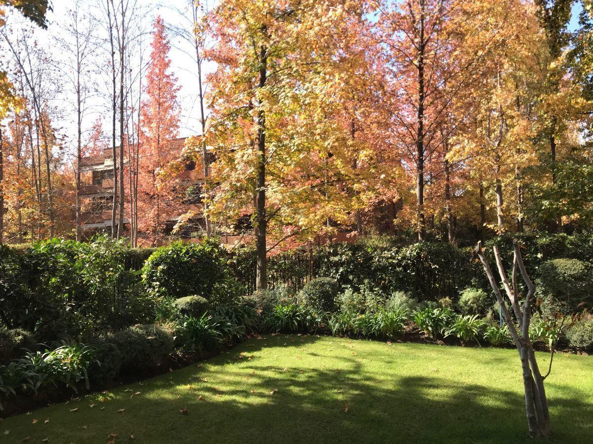 15 de 16: Jardín interior privado