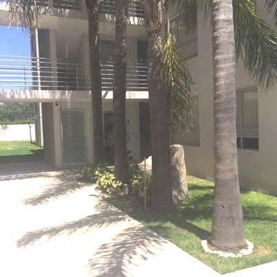 4 de 12: pasillos jardinados