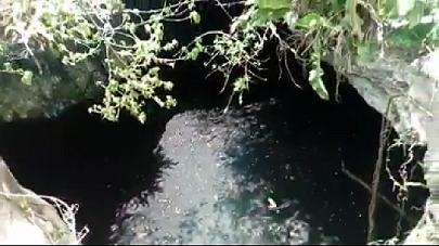 1 de 10: Cenote Abierto muy bonito