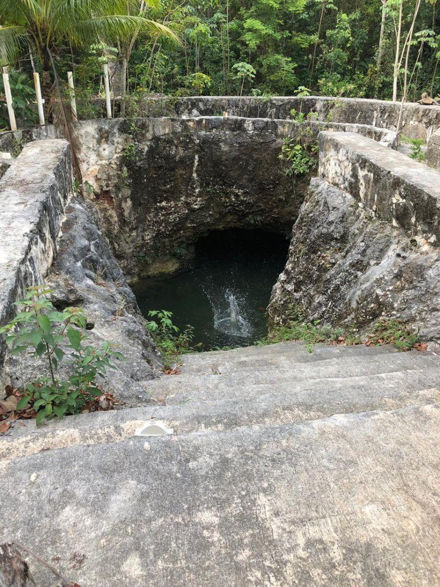 1 de 7: Cenote con acceso