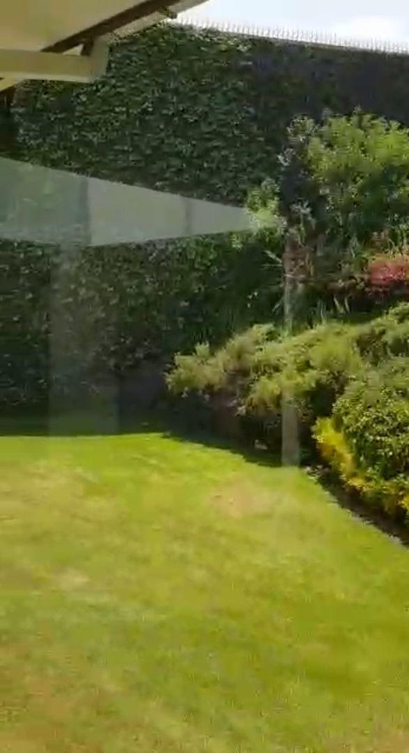 15 de 29: jardin