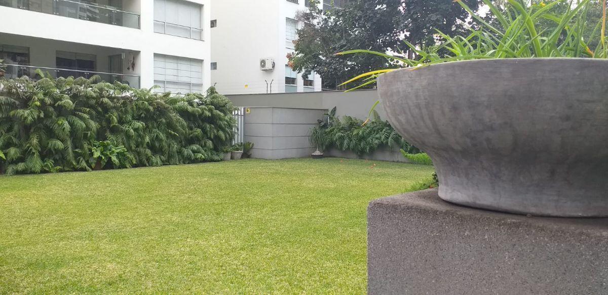 7 de 37: Jardín