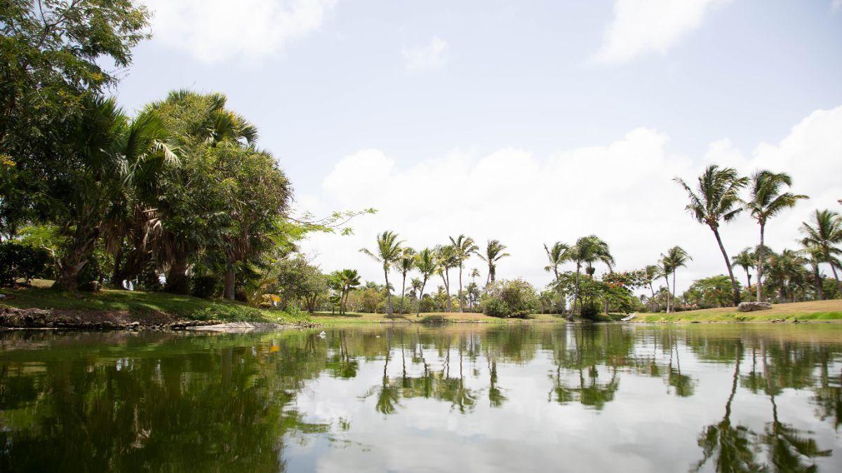 46 de 50: villa punta cana 3 dormitorios piscina privada