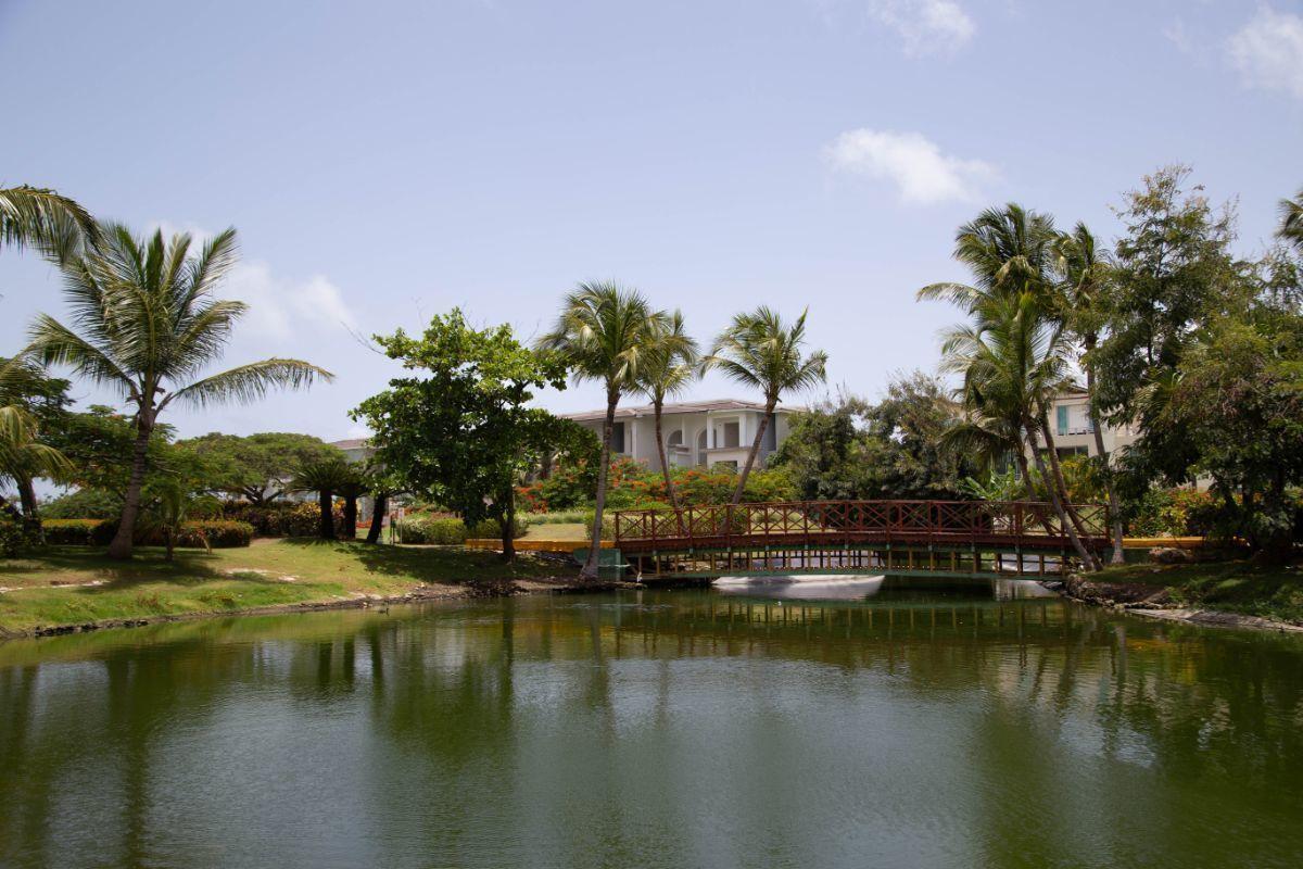38 de 50: villa punta cana 3 dormitorios piscina privada