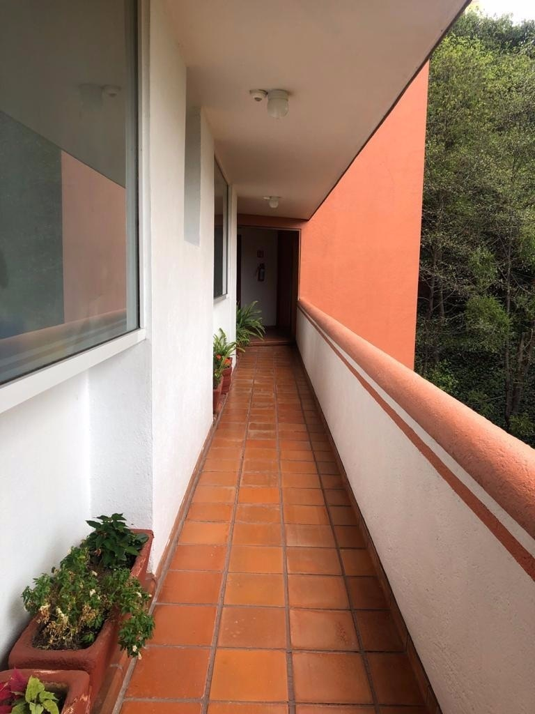 5 de 21: PASILLO DEL DPTO.  AL ELEVADOR
