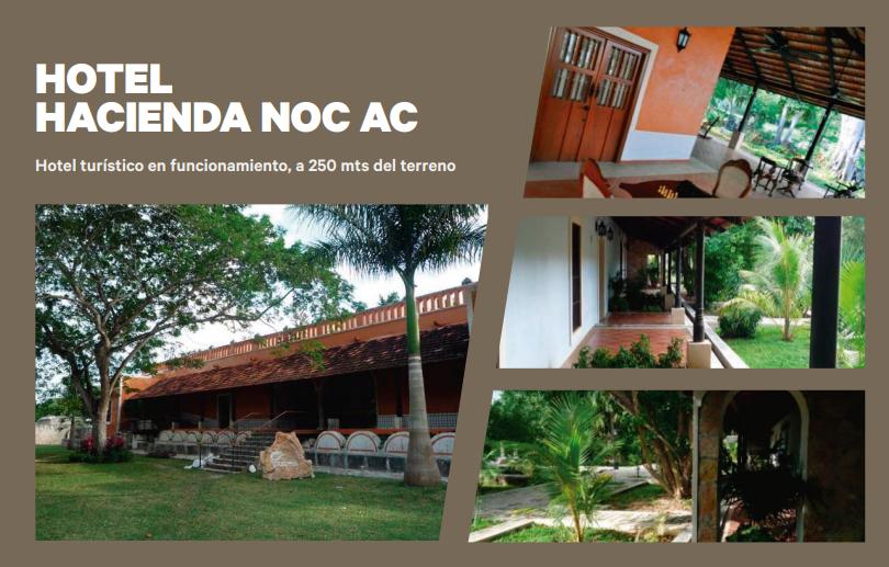 5 de 7: Terreno en venta de 50 Hectáreas en NOC AC , Yucatán.