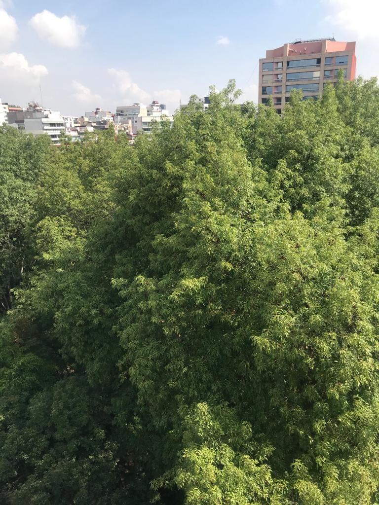 13 de 13: VISTA AL PARQUE DE URUGUAY