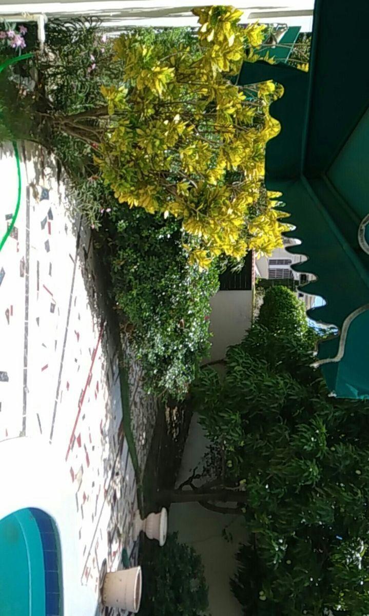 7 de 10: Patio lateral derecho frente a la piscina