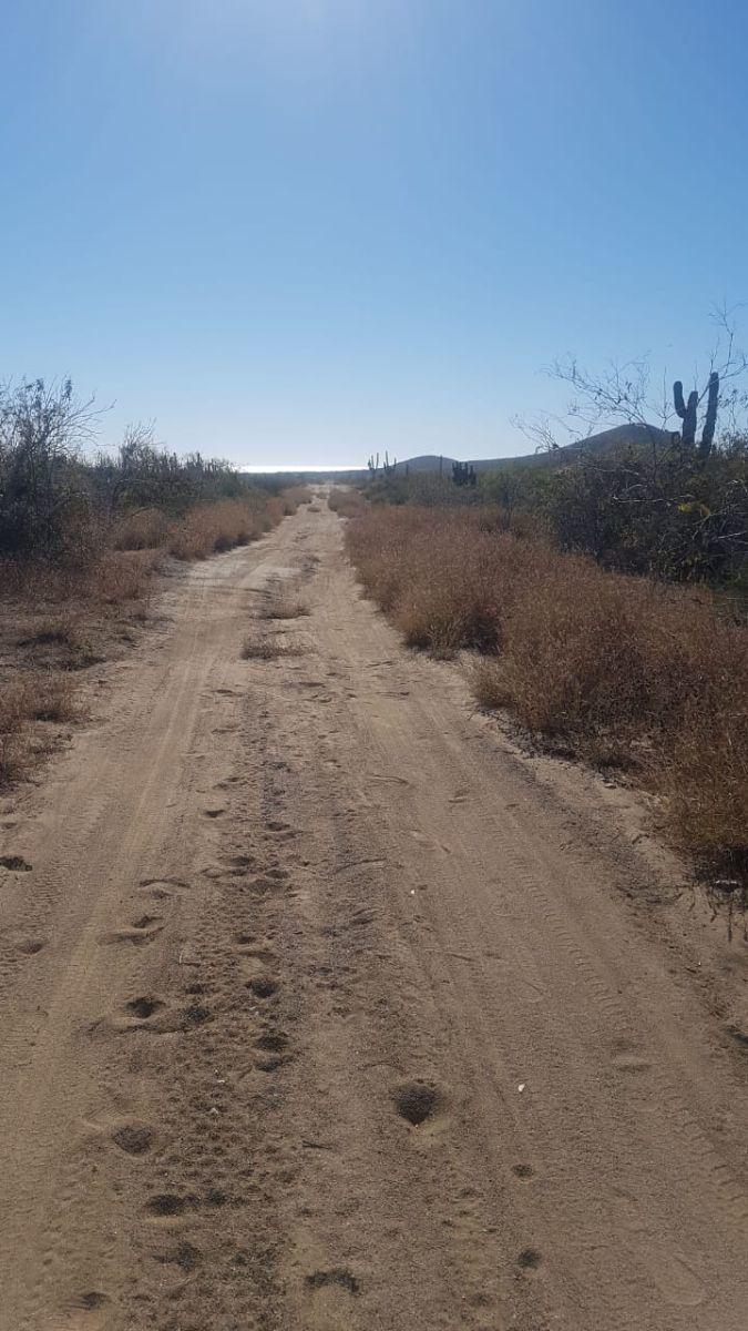 2 de 6: Terreno en cerritos camino