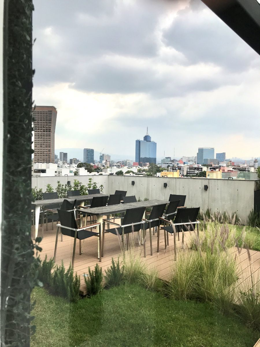13 de 19: Roof Garden