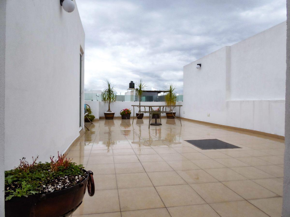 11 de 12: Roof garden