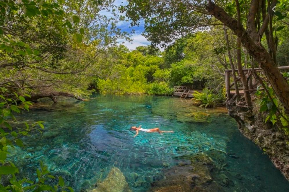 12 de 14: Reserva Ecologica  Los Ojos Indigenas