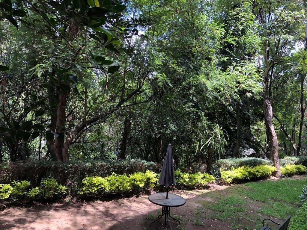 27 de 31: Jardín