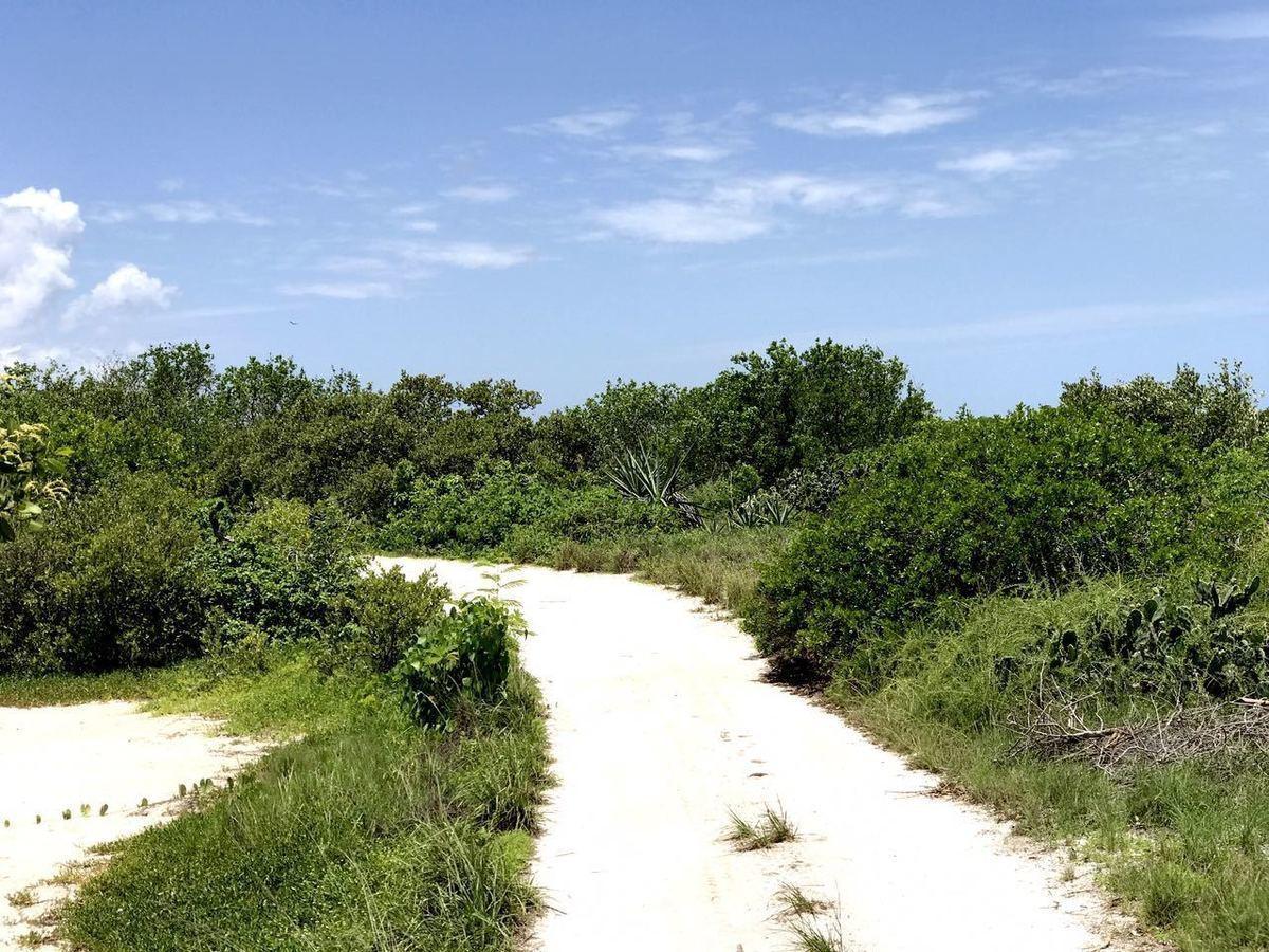 15 de 15: Terreno en Venta en Sisal, Yucatán.     Chichen Realty
