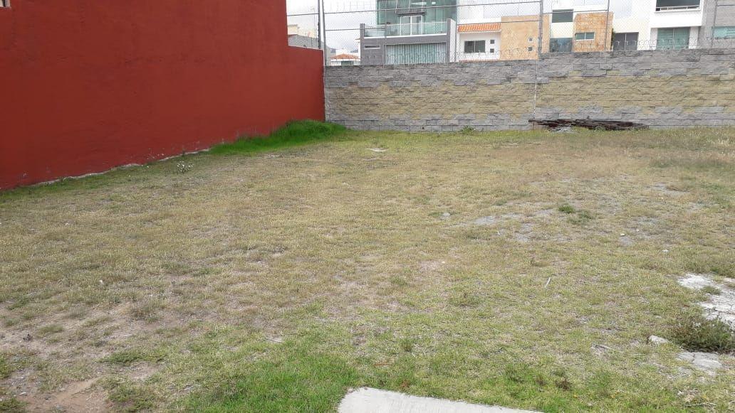 6 de 6: Terreno con excelente ubicación - Arboledas de San Javier