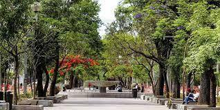 11 de 18: Paseo Chapultepec
