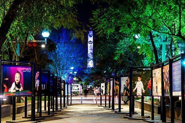 16 de 18: Paseo Chapultepec noche
