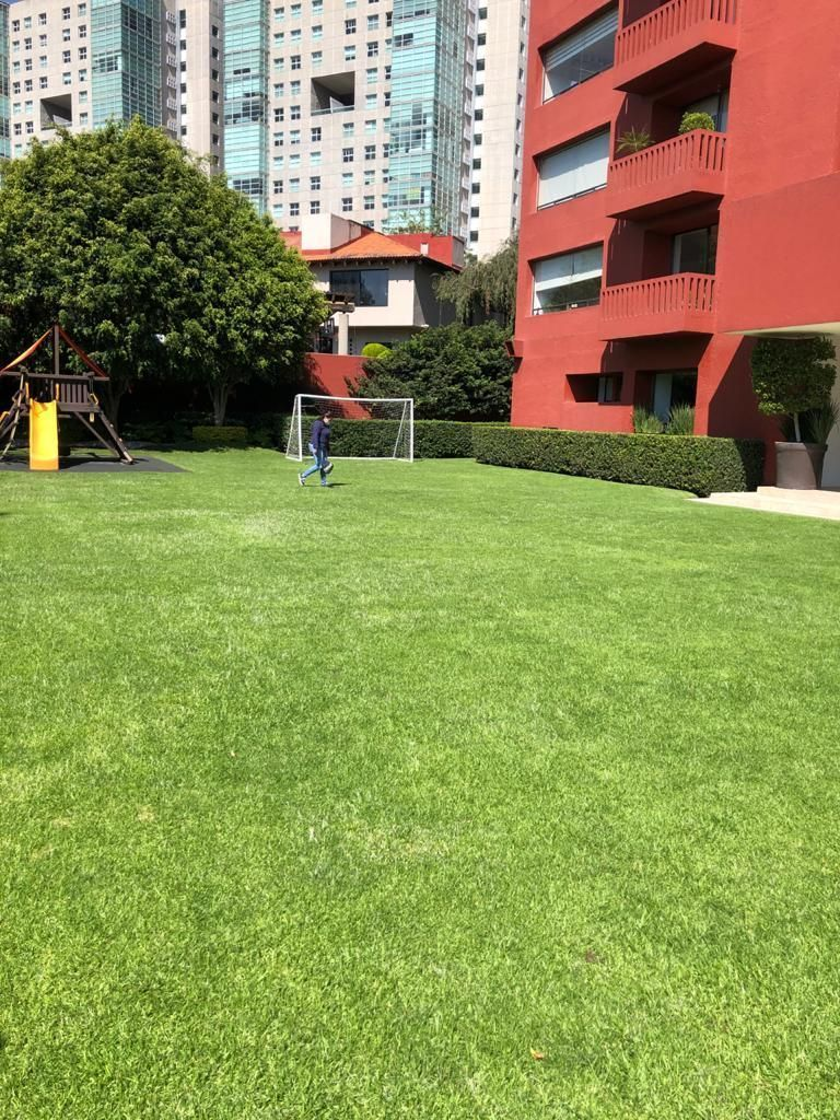 10 de 14: Esplendida area verde