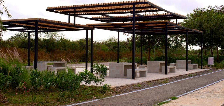 9 de 14: Jardín Lineal
