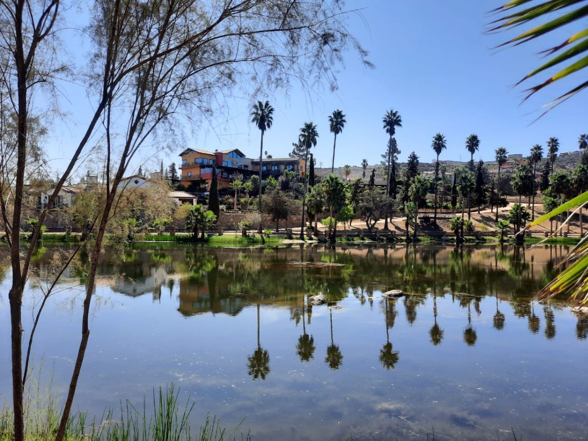 5 de 17: a 200 m del lago principal y de grandes Residencias