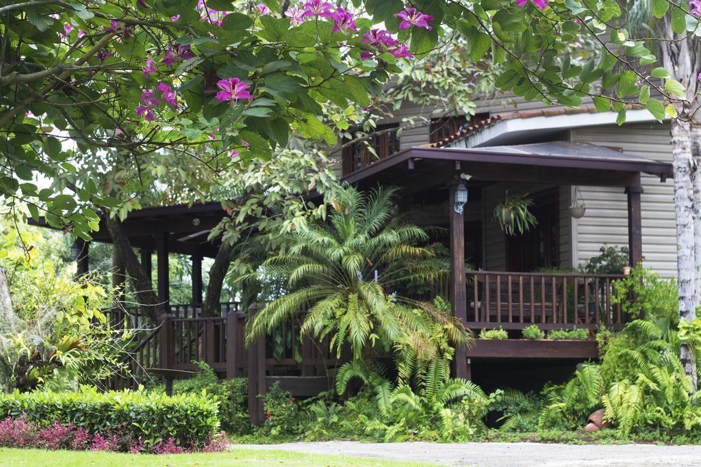 14 de 42: Pedro Brand villa 5 dormitorios