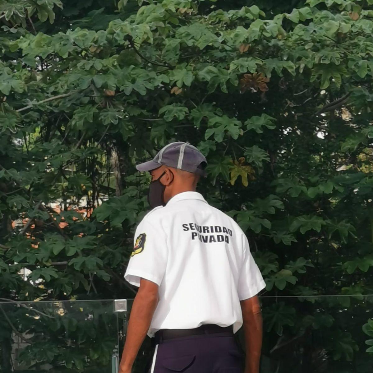 25 de 29: Vigilancia privada y uniformada