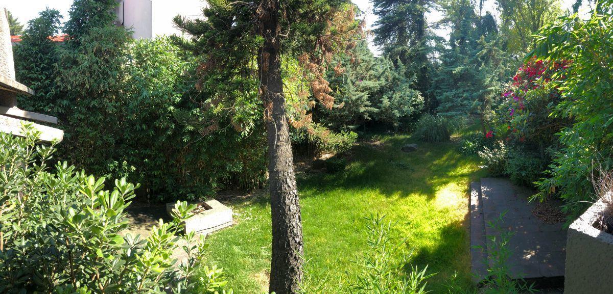 9 de 27: Vista al jardín